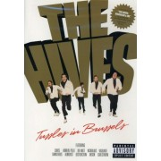 Hives - Tussles In Brussels (0602498746837) (1 DVD)
