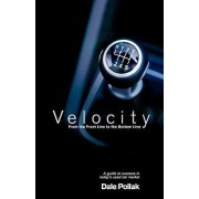 Velocity by Dale Pollak