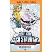 Secret Agent Jack Stalwart: Book 12: The Fight for the Frozen Land: The Arctic by Elizabeth Singer Hunt