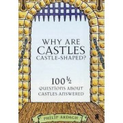 Why are Castles Castle-Shaped? by Philip Ardagh