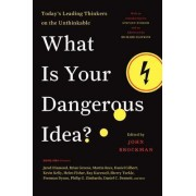 What Is Your Dangerous Idea? by John Brockman