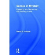 Senses of Mystery by David E. Cooper