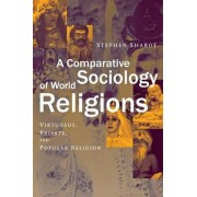A Comparative Sociology of World Religions by Stephen Sharot