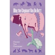 Why the Elephant Has No Butt by Osonye Tess Onwueme