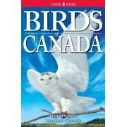 Vogelgids Birds of Canada | Lone Pine