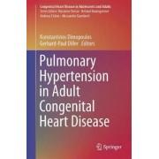 Pulmonary Hypertension in Adult Congenital Heart Disease by Konstantinos Dimopoulos