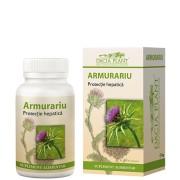 Armurariu - Pentru regenerarea şi detoxifierea ficatului