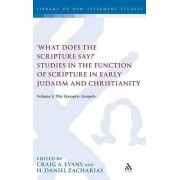 What Does the Scripture Say? Studies in the Function of Scripture in Early Judaism and Christianit by Craig A. Evans