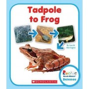 Tadpole to Frog by Lisa M Herrington