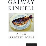 A New Selected Poems by Galway Kinnell