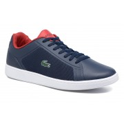 Sneakers Endliner 117 1 by Lacoste