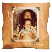 Damian Marley - Mr. Marley (0602517502703) (1 CD)