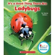 It's a Good Thing There Are Ladybugs by Joanne Mattern