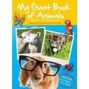 Big Book of Animals Baby Farm Pets