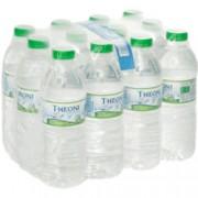 63 trays Theoni bronwater x 12 flessen a 500ml