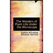The Wonders of Plant Life Under the Microscope by Sophia M'Ilvaine Bledsoe Herrick