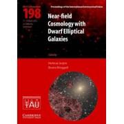 Near-Field Cosmology with Dwarf Elliptical Galaxies (IAU C198) by Helmut Jerjen