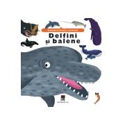 DELFINI - BALENE