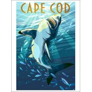 Cape Cod, Massachusetts Great White Shark (Playing Card Deck 52 Card Poker Size With Jokers)