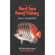 The Diver's Guide to Red Sea Reef Fishes by John E. Randall