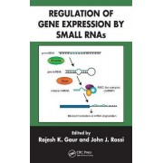 Regulation of Gene Expression by Small RNAs by Rajesh K. Gaur