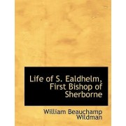 Life of S. Ealdhelm, First Bishop of Sherborne by William Beauchamp Wildman