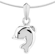 Assieraad dolfijn