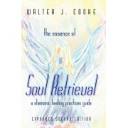 The Essence of Soul Retrieval: A Shamanic Healing Practices Guide by Walter Cooke