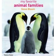 My Favourite Animal Families by Steve Bloom