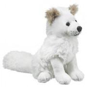 Arctic Fox 7 by Wild Life Artist