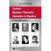 Certain Number-Theoretic Episodes in Algebra by R. Sivaramakrishnan