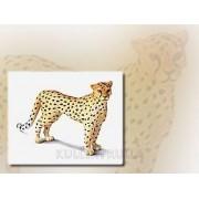 Schleich 14143 - Figura/ miniatura Cheetah