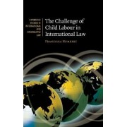 The Challenge of Child Labour in International Law by Franziska Humbert
