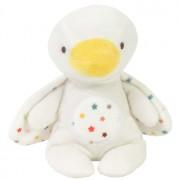 Duck Duco