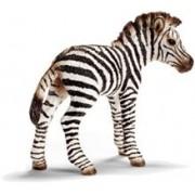 Figurina Animal Pui De Zebra - 14393