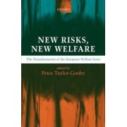New Risks, New Welfare by Peter Taylor-Gooby