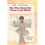 The Most Beautiful Place in the World by Ann Cameron