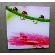 glasschilderij lieveheersbeestjes 20 cm