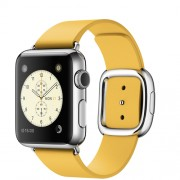 APPLE 38MM STAINLESS STEEL CASE WITH MARIGOLD MODERN BUCKLE - SMALL