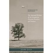 Spiritual Wisdom of Gospels for Christian Preachers and Teachers: Year B by John Shea