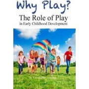 Why Play? the Role of Play in Early Childhood Development by Christopher K Pancoast