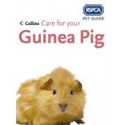 Care for your Guinea Pig by RSPCA