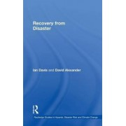 Recovery from Disaster by Ian Davis
