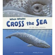 When Whales Cross the Sea: The Gray Whale Migration by Katz Sharon Cooper