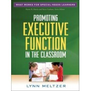 Promoting Executive Function in the Classroom by Lynn Meltzer