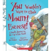 You Wouldnt Want to Climb Mount Everest! by Ian Graham