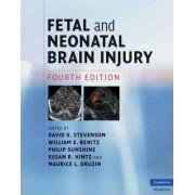 Fetal and Neonatal Brain Injury by David K. Stevenson