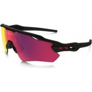 Oakley Radar EV Path Occhiali ciclismo Uomini nero/colorato Occhiali