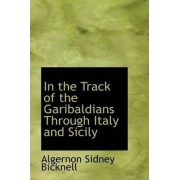 In the Track of the Garibaldians Through Italy and Sicily by Algernon Sidney Bicknell