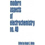 Modern Aspects of Electrochemistry: v. 40 by Ralph E. White